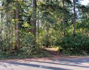 22413 Autumnwood Court SE, Yelm image
