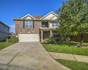 30723 Woodson Trace Drive, Spring image