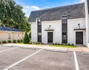3655 Old Shell Road Unit 118, Mobile, AL image