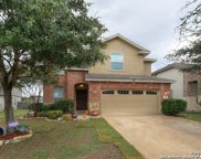 182 Summer Tanager, San Antonio image
