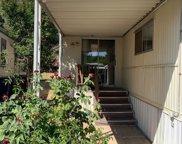 45  Goldenrod Avenue, Auburn image
