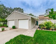 3142 Brooker Creek Way, Palm Harbor image