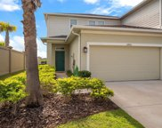 10983 Verawood Drive, Riverview image