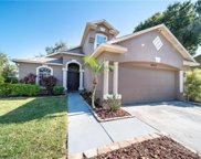 9352 Hidden Water Circle, Riverview image