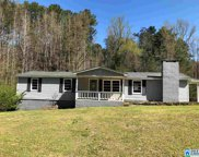 5744 Miles Spring Rd, Pinson image