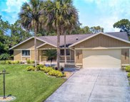 16576 Bear Cub  Court, Fort Myers image