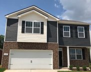 2066 Sunflower Drive  368, Spring Hill image
