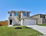11819 Viney Pass, San Antonio image