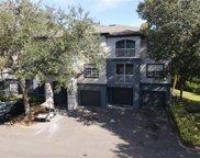 13203 Sanctuary Cove Drive Unit 204, Temple Terrace image