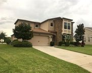 820 Crooked Branch Drive, Clermont image