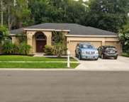 2528 Appaloosa Trail, Palm Harbor image