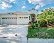 8330 Old Town Drive, Tampa image