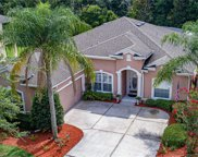5440 Rishley Run Way, Mount Dora image