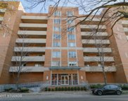 435 William Street Unit #208, River Forest image