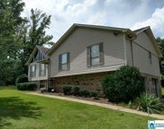 5660 Old Springville Rd, Pinson image