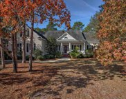 82 Bald Cypress Ct., Pawleys Island image