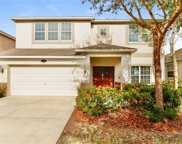 10726 Pictorial Park Drive, Tampa image