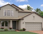 13223 Satin Lily Drive, Riverview image