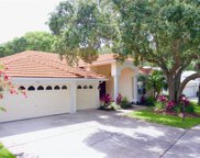 1715 Anglers Court, Safety Harbor image