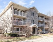 6648 West 65Th Street Unit 1S, Chicago image