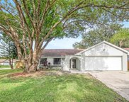 15011 Naples Place, Tampa image