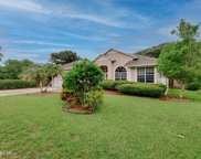 61 Loggerhead Court, Ponce Inlet image