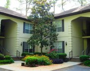 108 Pipers Ln. Unit 108, Myrtle Beach image