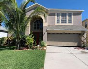 11205 Village Brook Drive, Riverview image