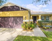 11134 Running Pine Drive, Riverview image