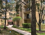 6430 West Belle Plaine Avenue Unit 307, Chicago image