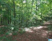 821 Sunshine Avenue Unit 4.8 acres, Oneonta image