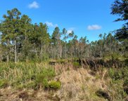 2325 Hwy 67, Carrabelle image