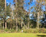 10 Northwoods Ct., Pawleys Island image
