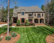 3008  Cowhorn Branch Court, Waxhaw image