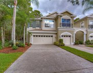14251 Waterville Circle, Tampa image