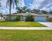 14817 Barby Avenue, Tampa image