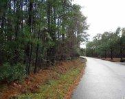 1043 Deer Run Ave., Georgetown image