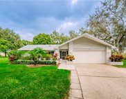 3250 Ayr Drive, Palm Harbor image