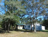 381 Caswell Drive, Defuniak Springs image