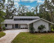 852 Hickory Knoll Court, Apopka image
