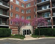 5320 N Lowell Avenue Unit #409, Chicago image