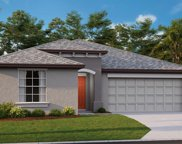 14909 Tropical Violet Way, Wimauma image