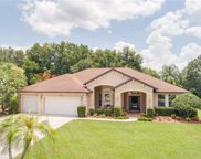 30824 Top Of The Hill Drive, Mount Dora image