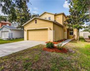 4633 White Bay Circle, Wesley Chapel image