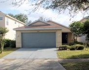 11628 Crest Creek Drive, Riverview image