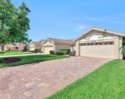28890 Marsh Elder Ct, Bonita Springs image