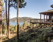 707 NW Thatcher Pass Rd, Decatur Island image