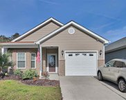 244 Palm Cove Circle, Myrtle Beach image