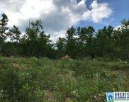 2495 Co Rd 22 Unit 55 Acres, Ashville image