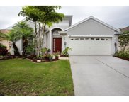 1509 Emerald Hill Way, Valrico image